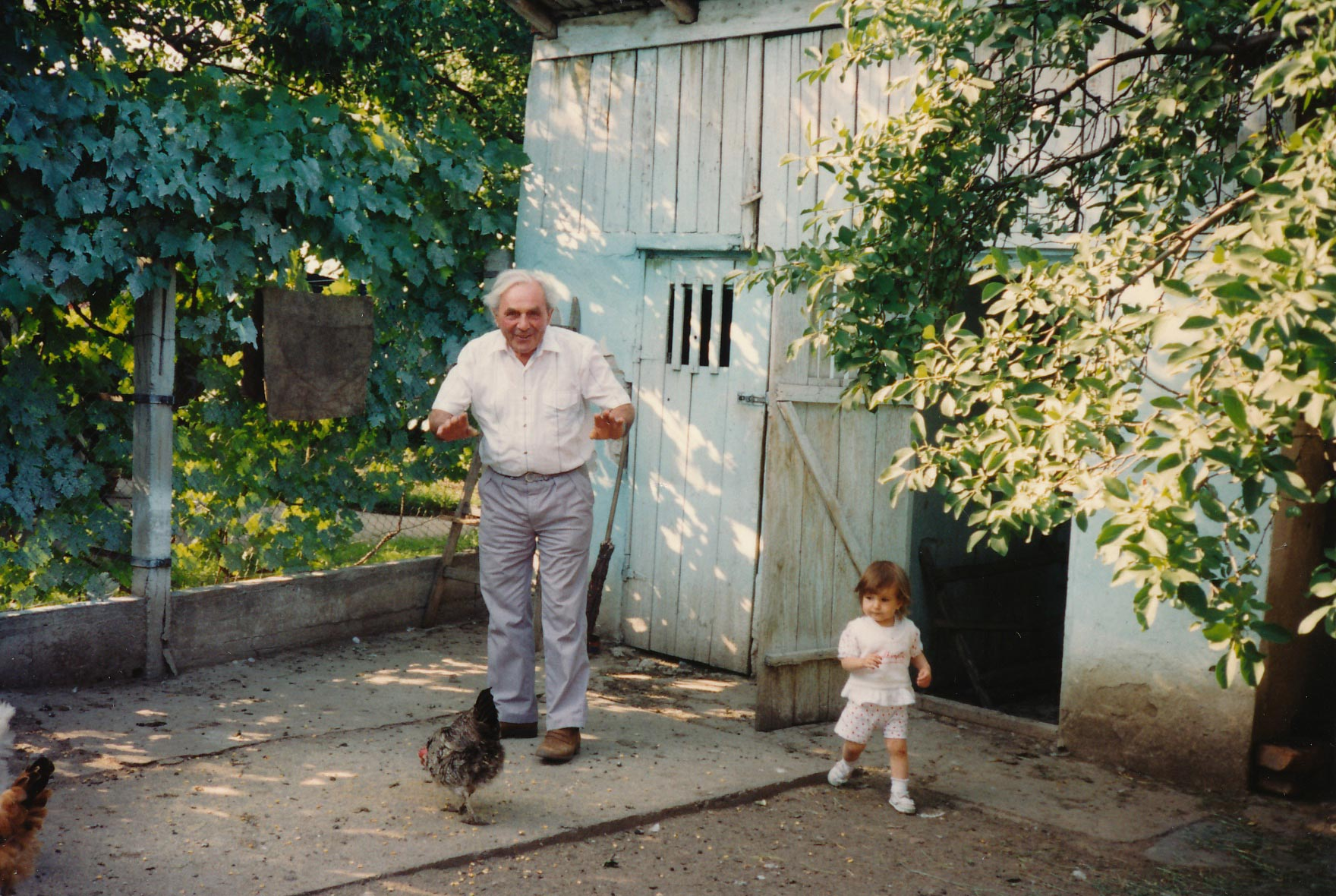 colour picture of grandpa and one year old sister with chicken in backyard